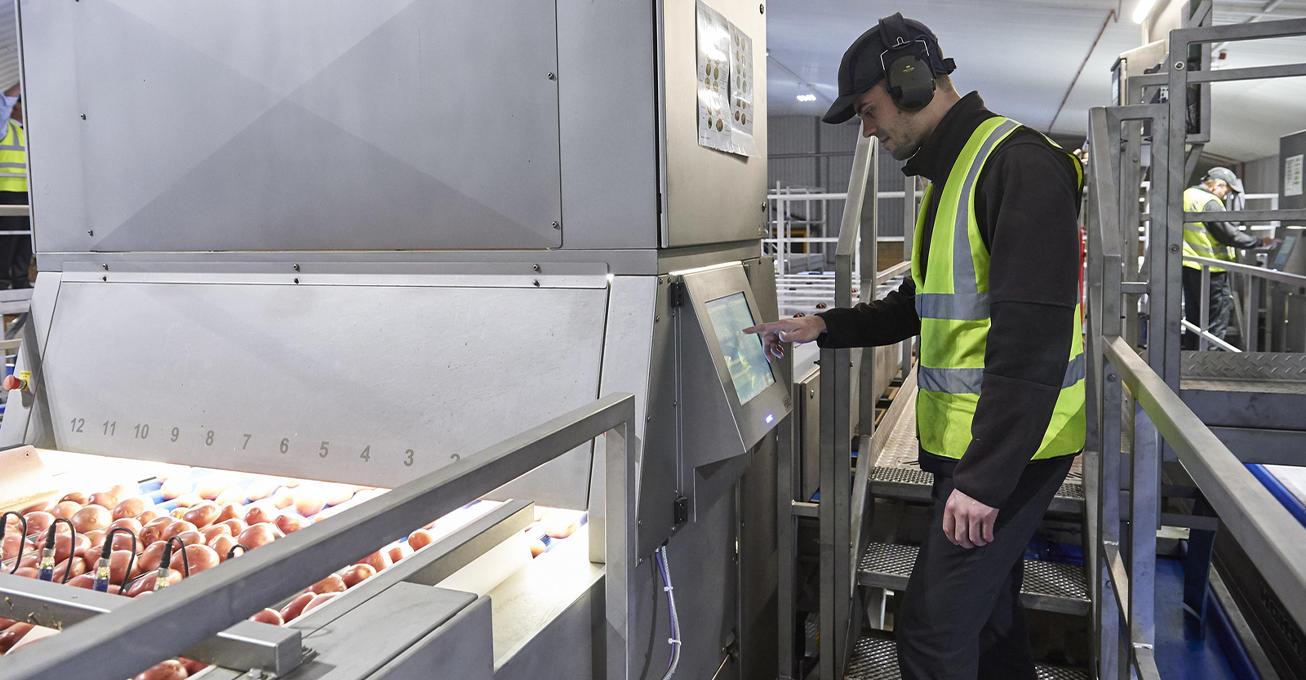 UK's increased potato demand creates temporary jobs at Lincoln supplier